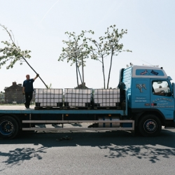 Moving Orchards